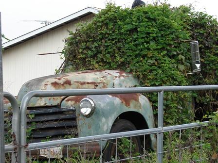 Junk Car Cleanup
