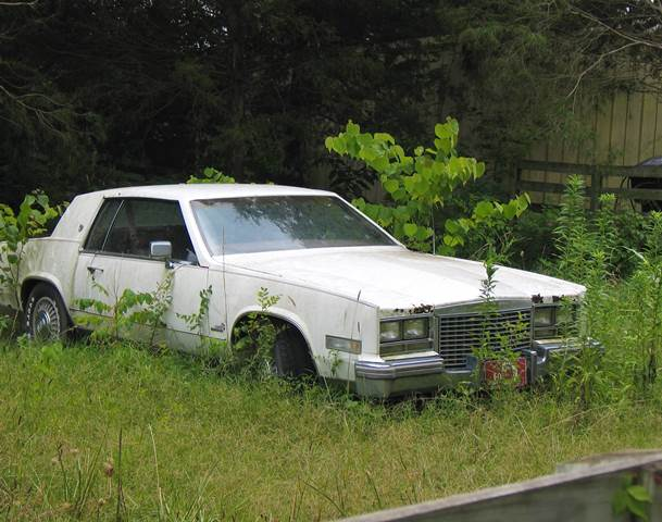 Latest Junk Car News Blog Columbus Scrap Cars