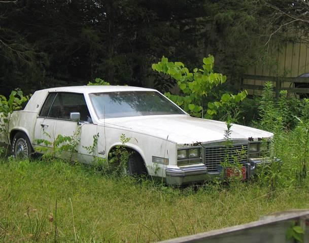Salvage Car Columbus